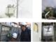 Kaçak Elektrik Kullanımı Nedir Ülkeye Zararları Nelerdir Kaçak Elektrik Kullanmanın Sakıncaları.