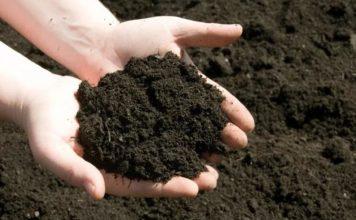 Topraktan Hangi Şekillerde Faydalanırız, Yararlanırız