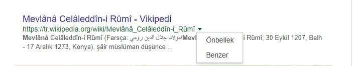 Wikipedia'ya Nasıl Girilir? (Programsız, Dns'siz, VPN'siz Farklı Giriş)